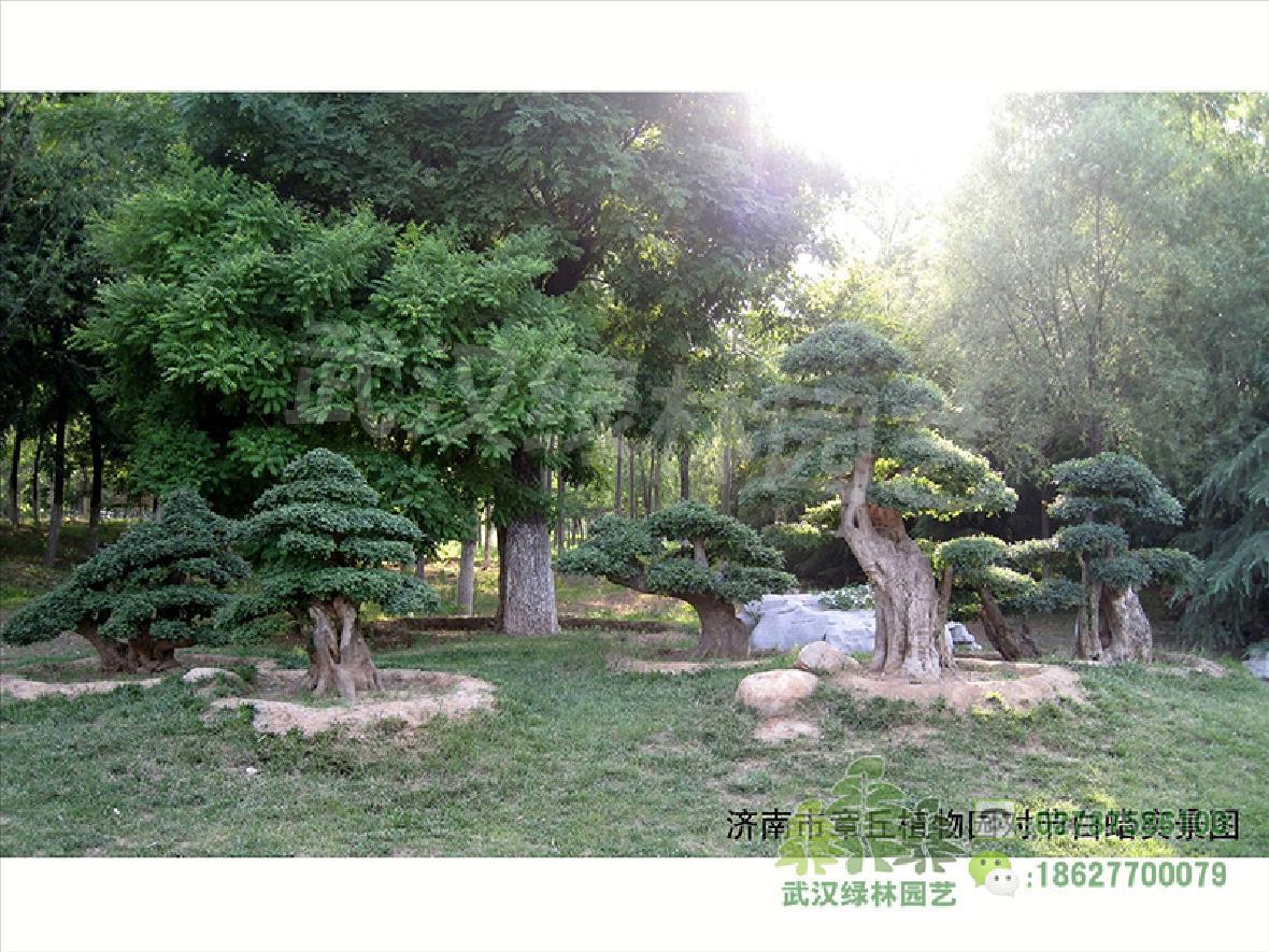 济南章丘植物园